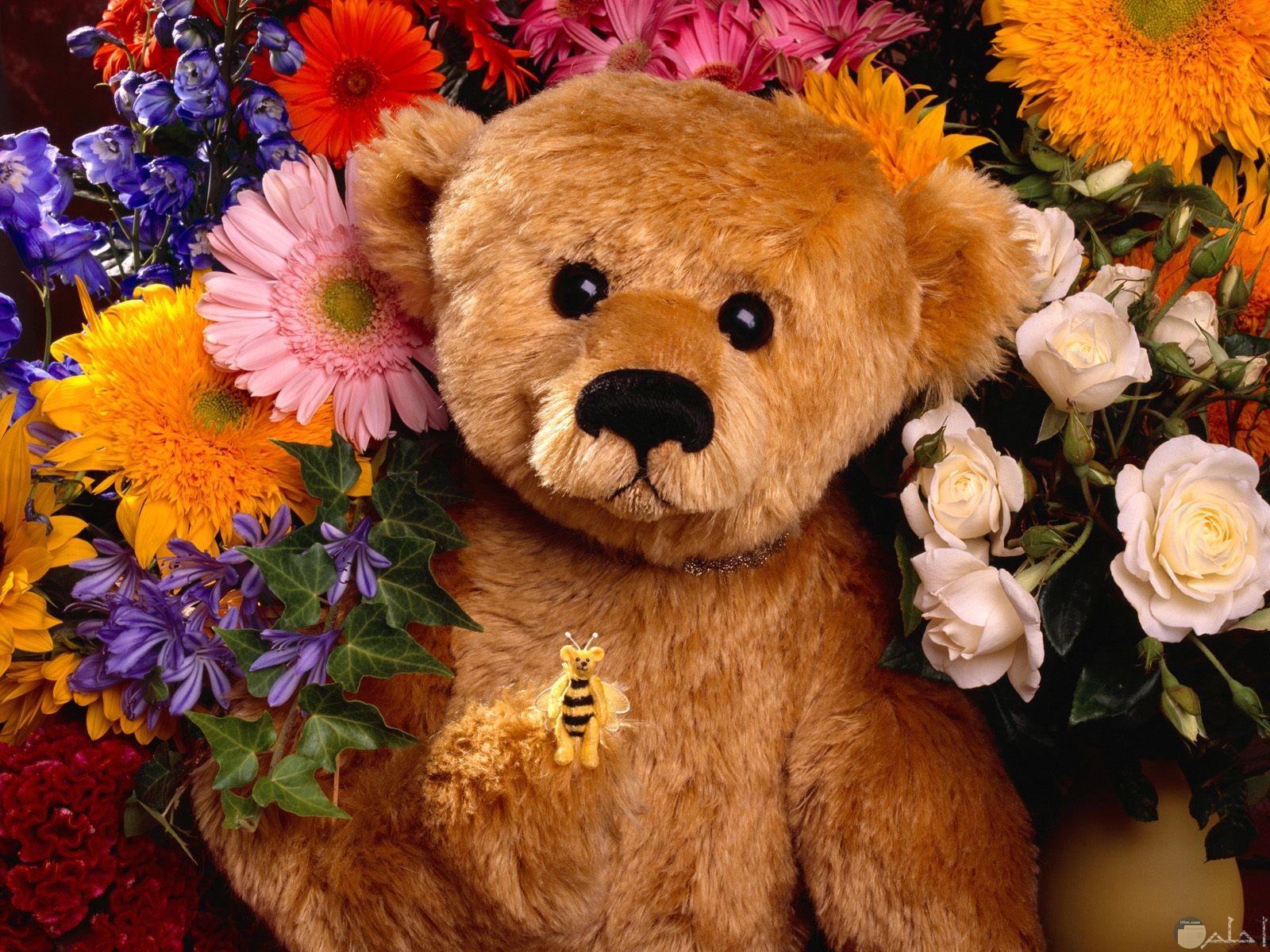 أجمل دبدوب رومانسي مع الزهور