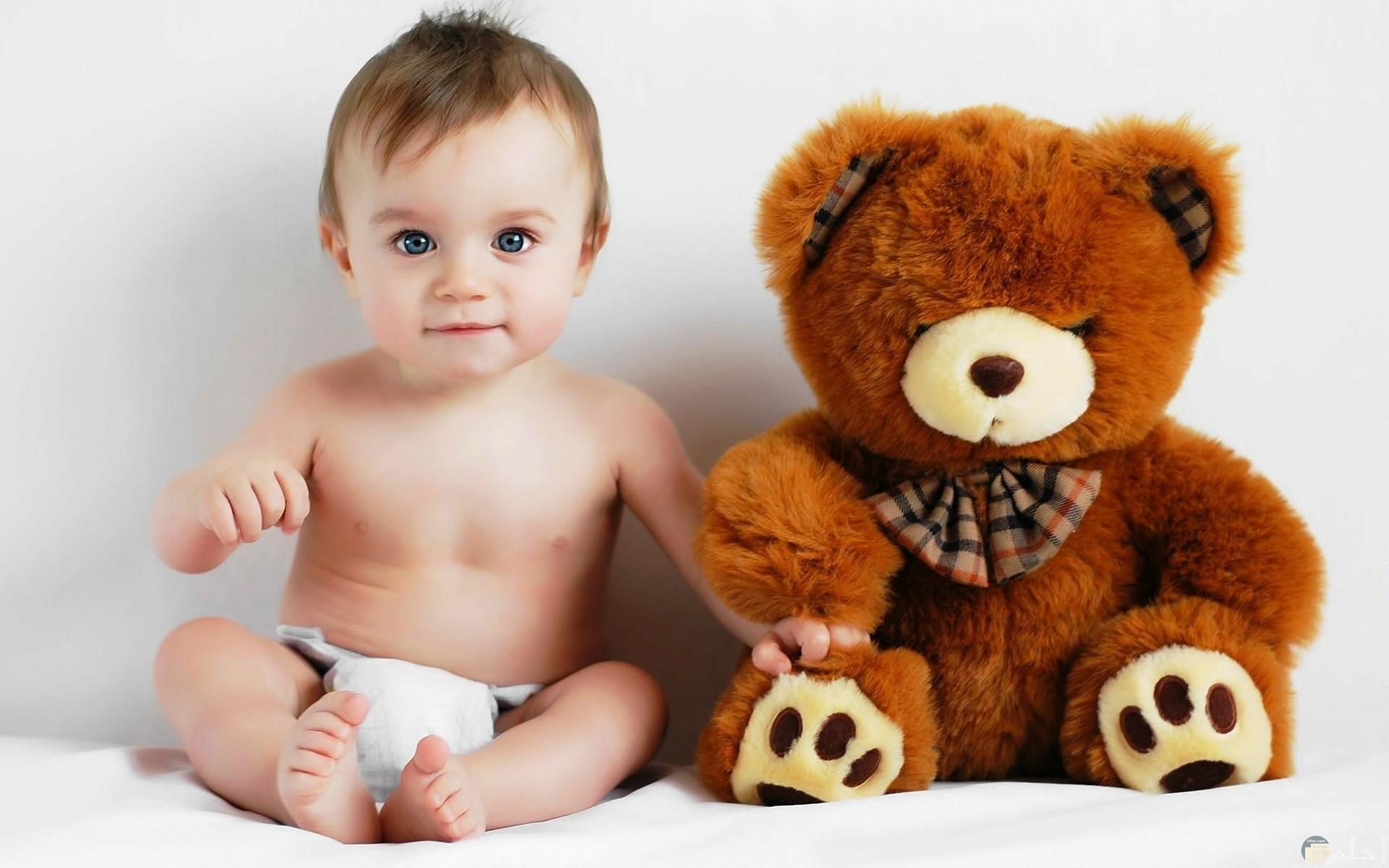 بيبى كيوت مع الدبدوب