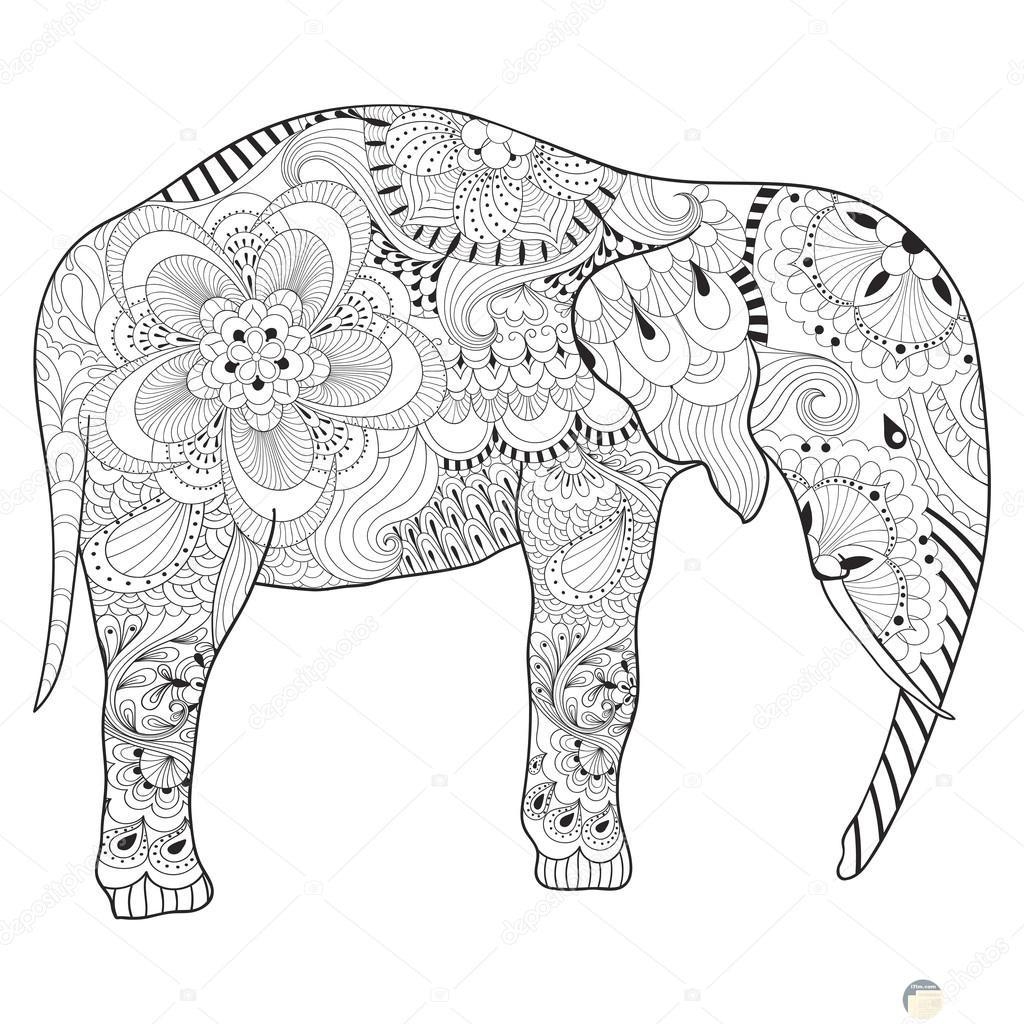صورة فيل لتلوينها