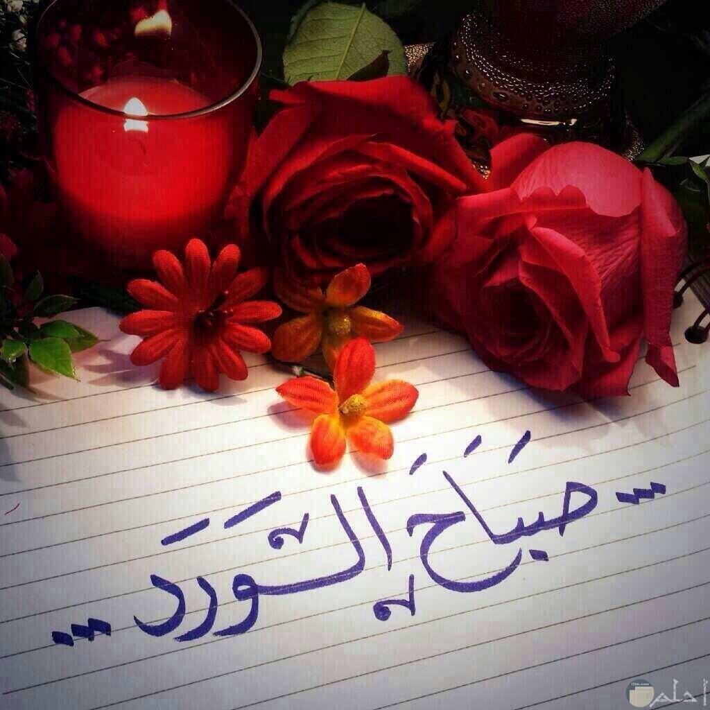 صورة بها ورود حمراء وشمعة وعبارة صباح الورد