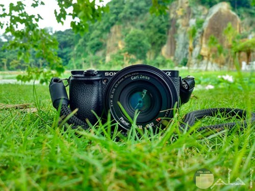 صور طبيعية بالكاميرا