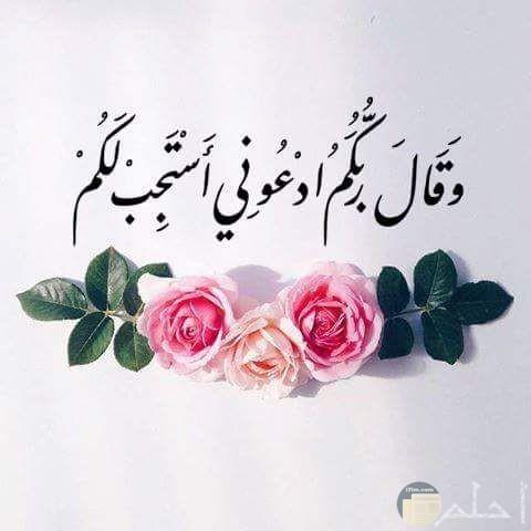 آية قرآنية لفضل الدعاء