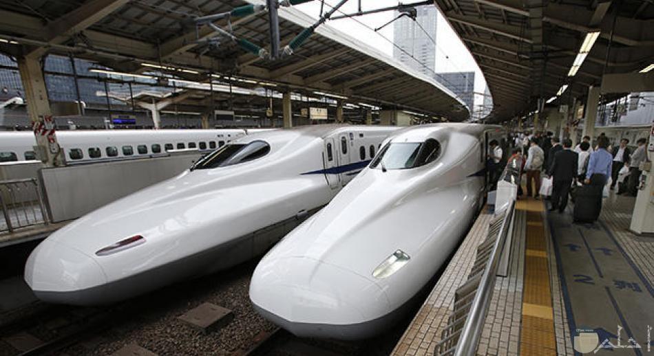ماجليف القطار الياباني السريع