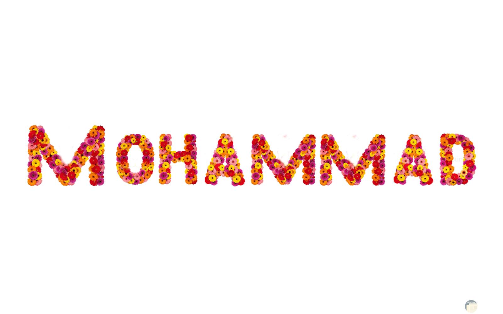 محمد صورة مكتوبة