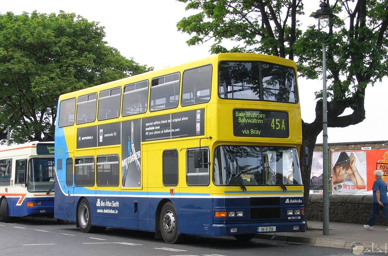 من صور الباص بدورين