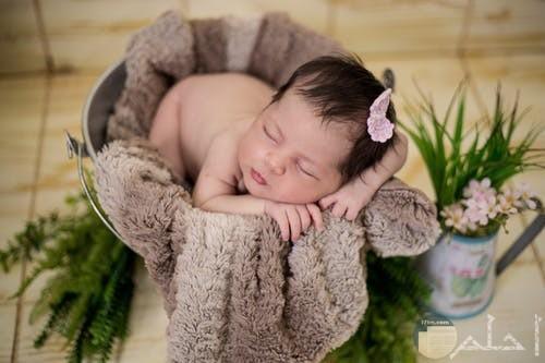 مولودة بنت صغيرة