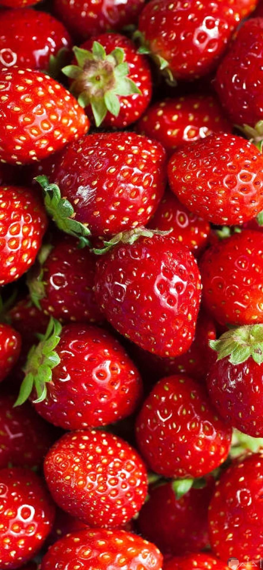 صور فراولة