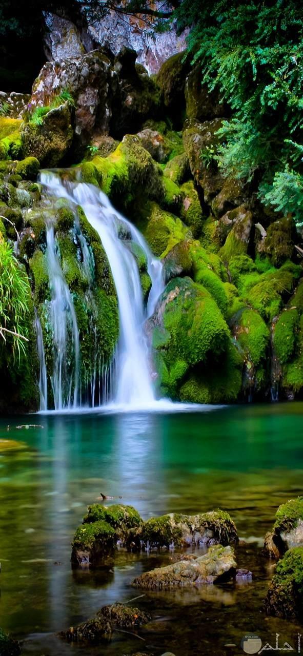 اجمل صور شلالات طبيعية