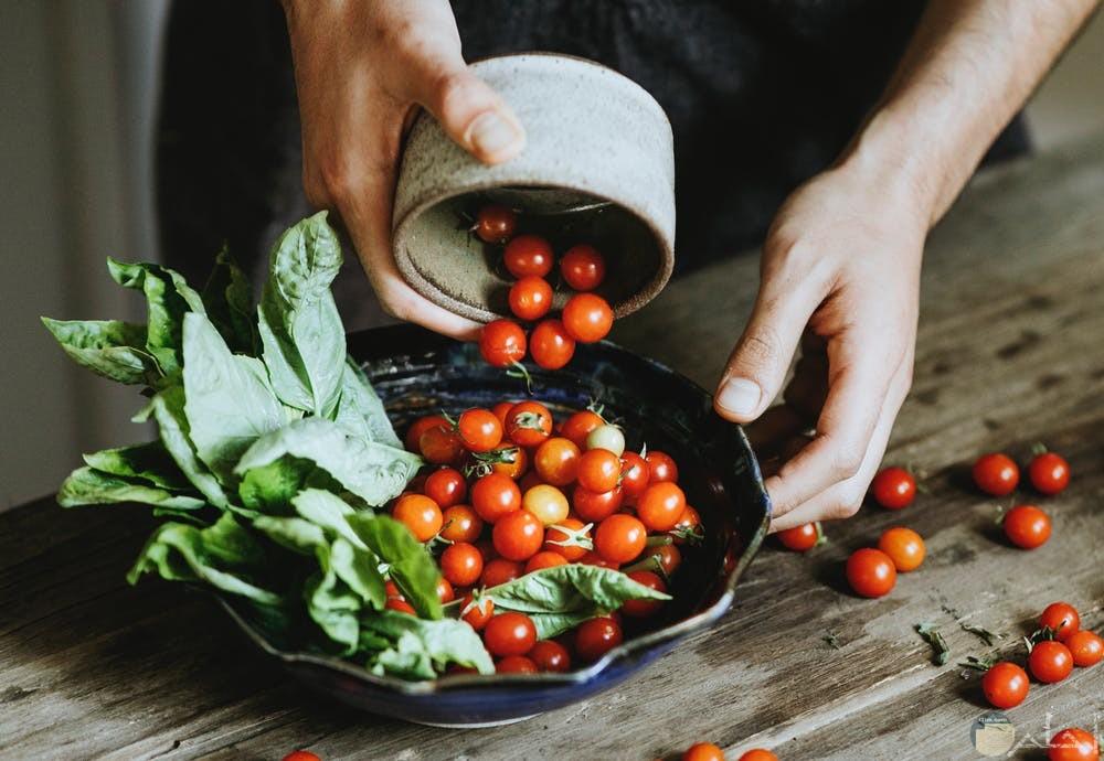 صور طماطم تجنن