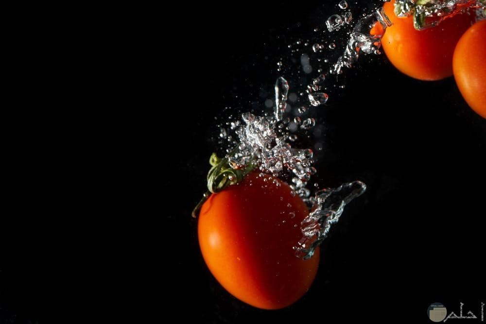 صور طماطم مدهشة