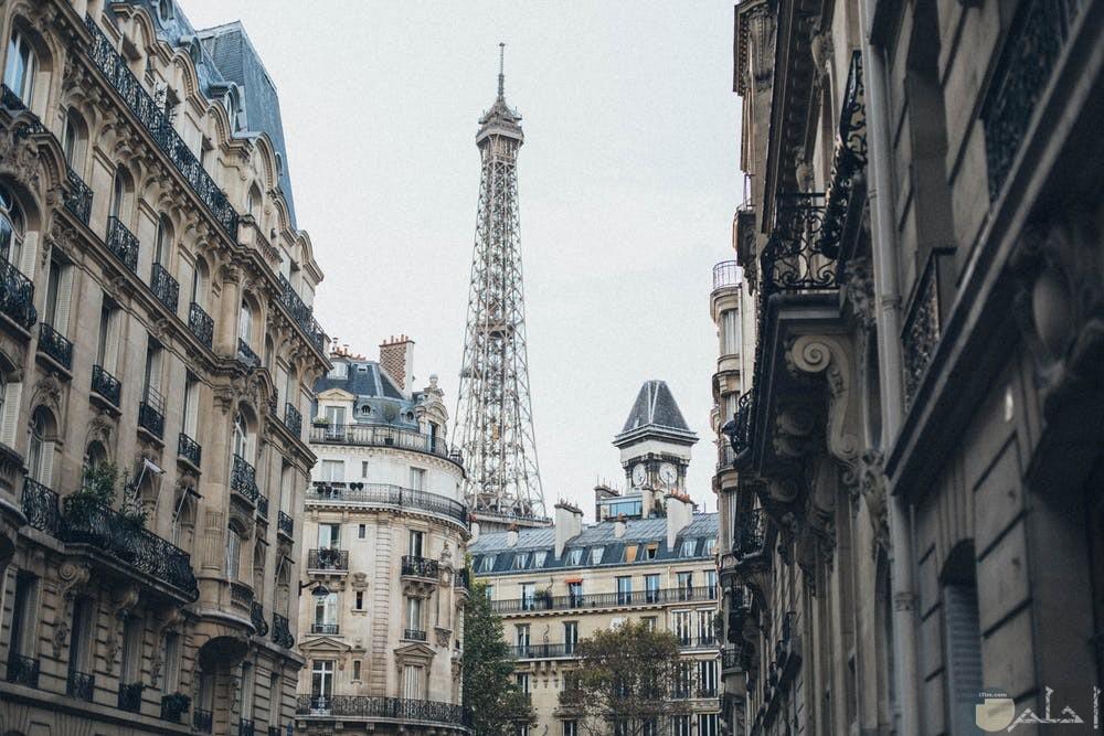 صور باريس تجنن