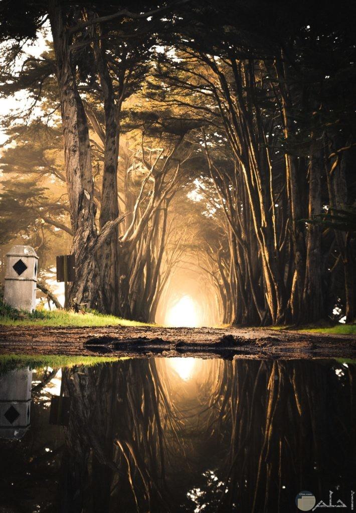 صور خيالية مميزة