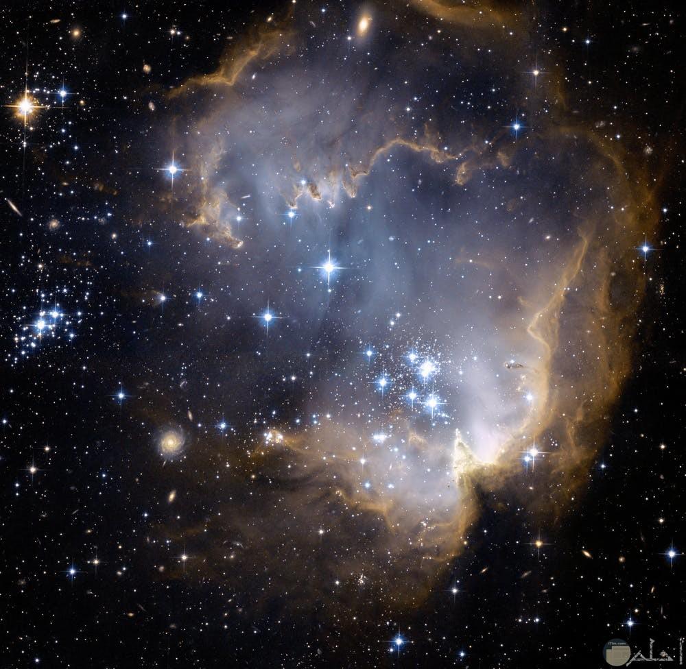 صور نجوم مختلفة