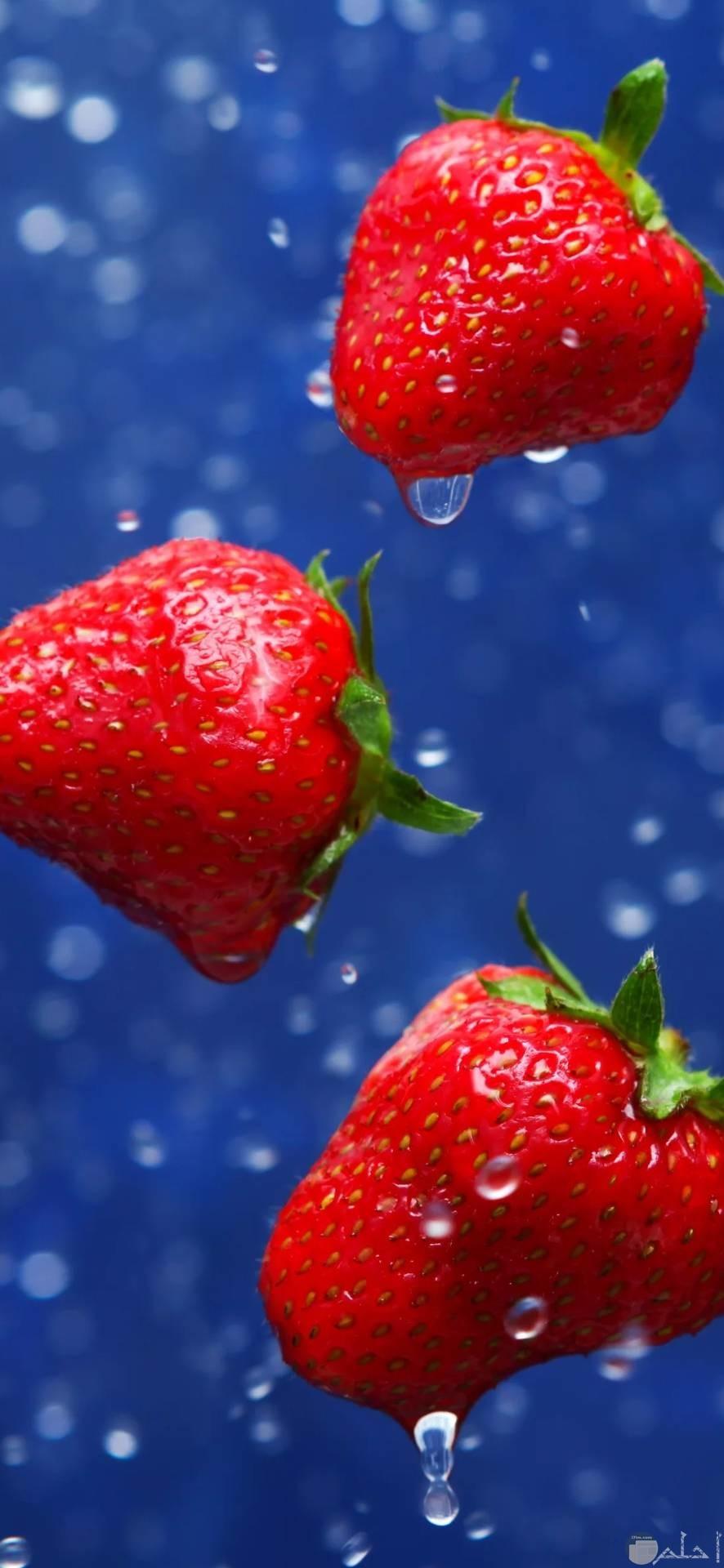 صور فراولة جذابة