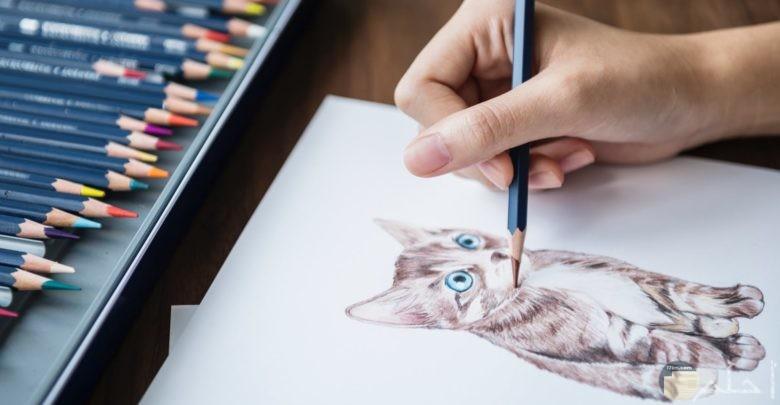 اشكال رسومات حيوانات