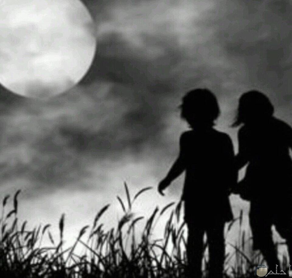 الحب والكبرياء هل يجتمعان