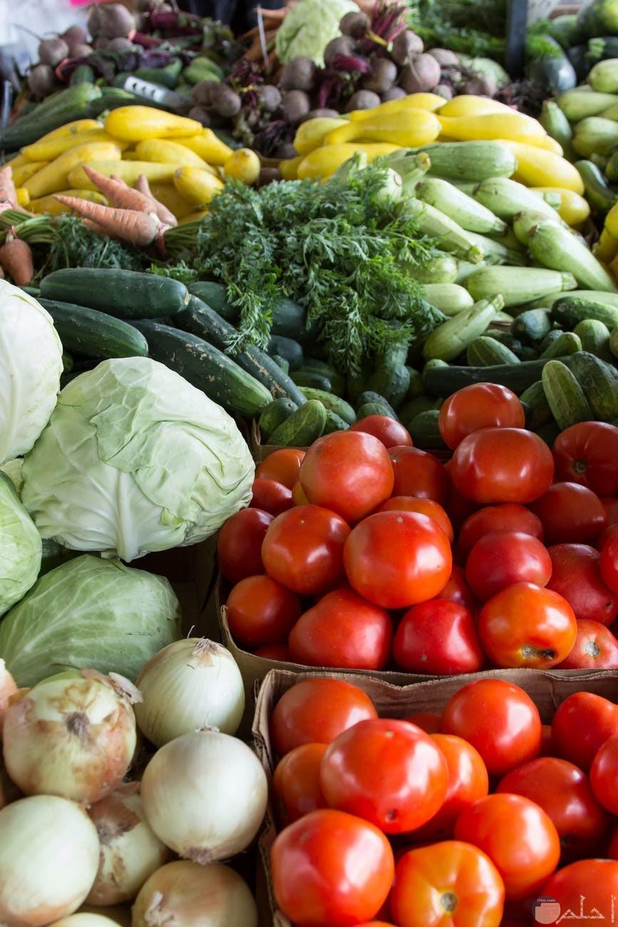 الخيار والخضروات الطازجة