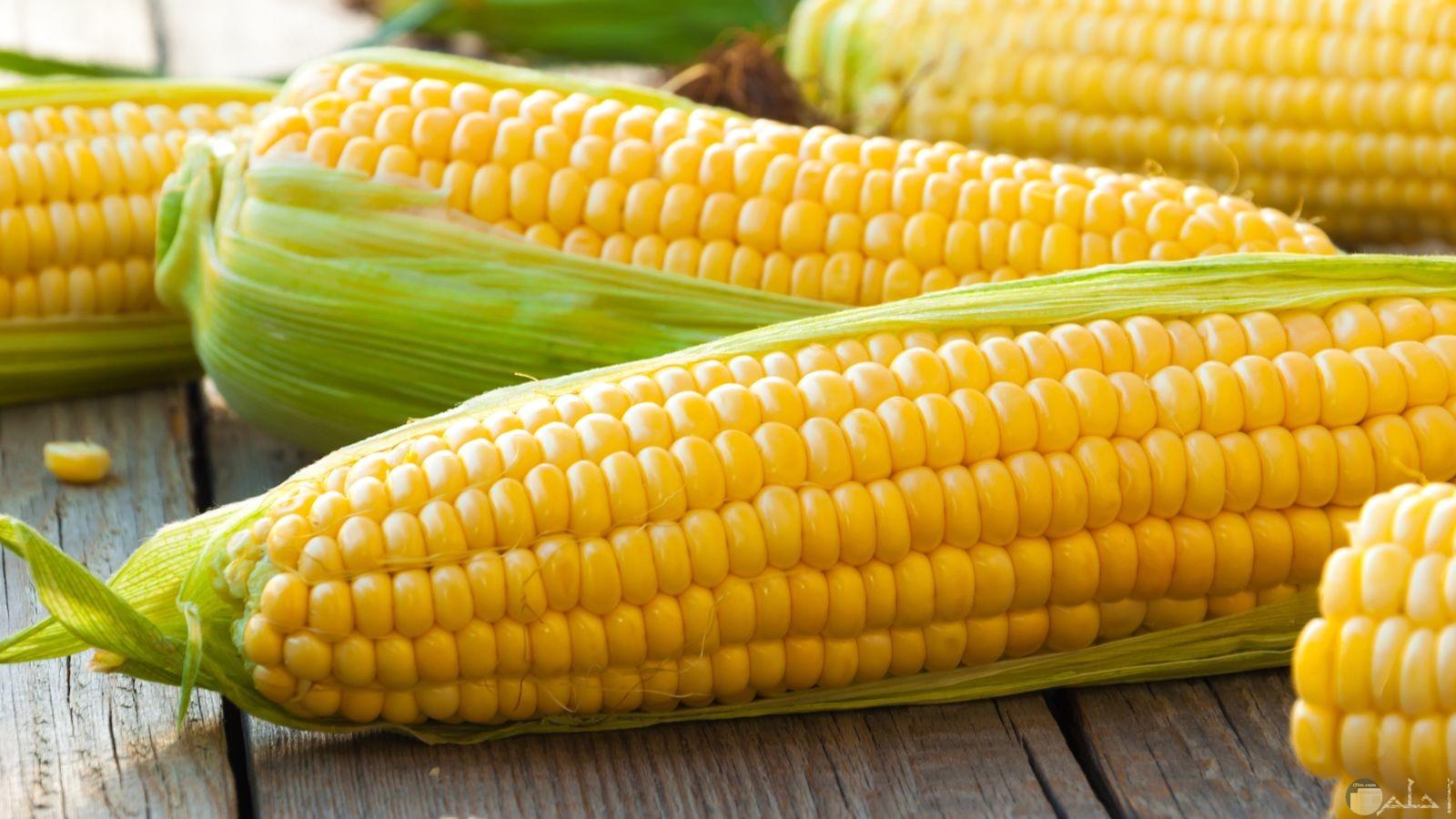 بعض حبات الذرة الصفراء ذات الطعم اللذيذ