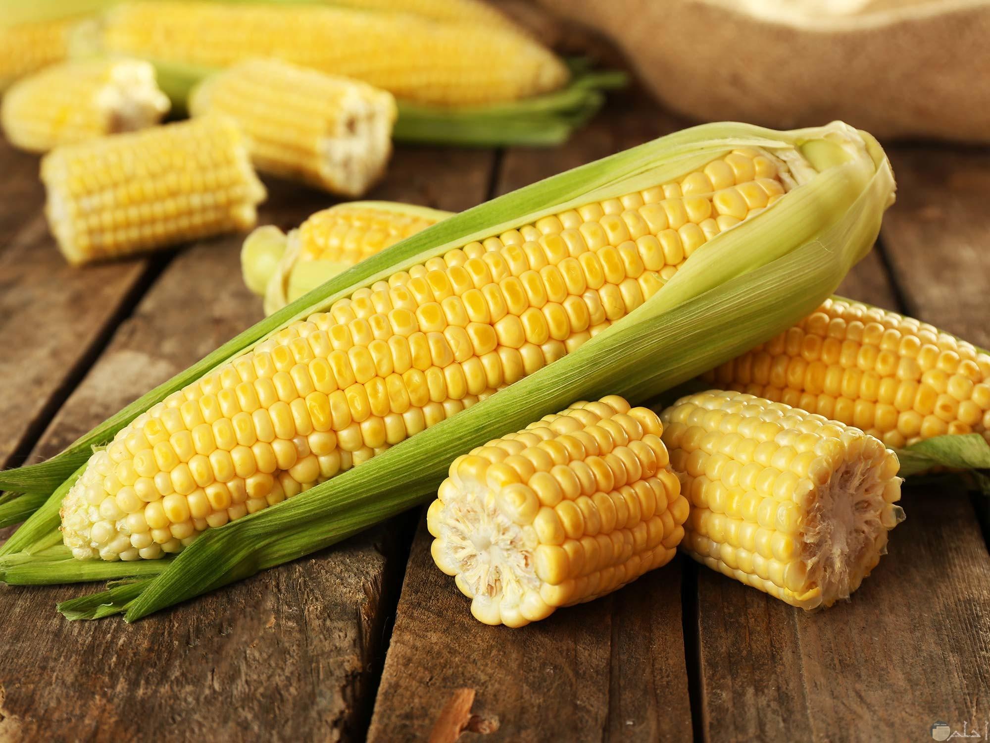 حبات الذرة الصفراء اللذيذة الطعم والكثيرة الفوائد