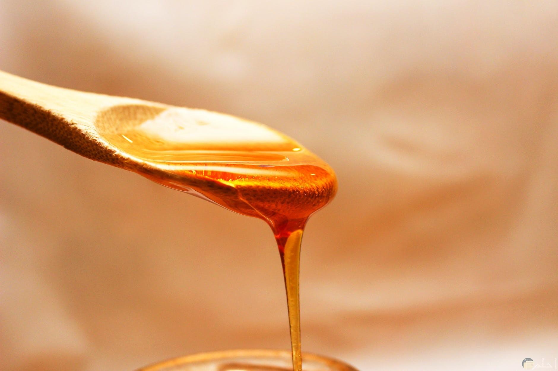 العسل الاصلي وقوامه