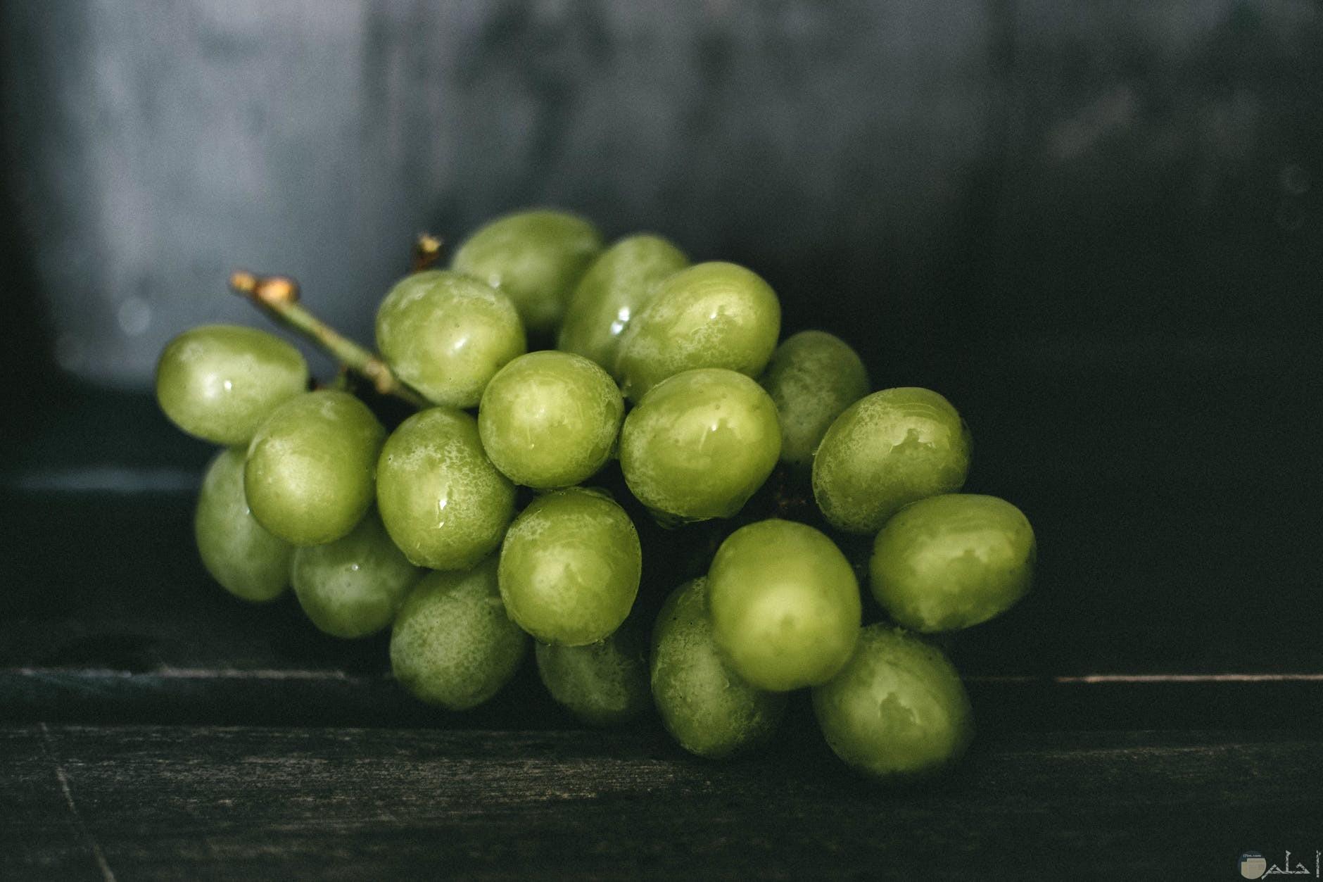 العنب الاخضر الجميل