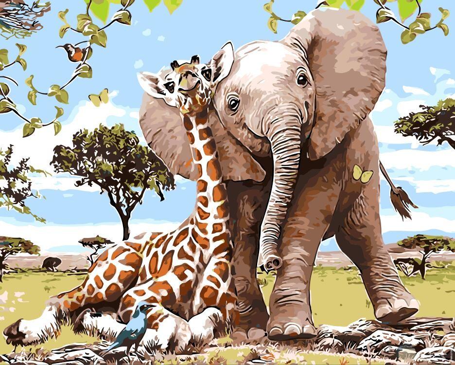 الفيل والزرافة صورة مميزة