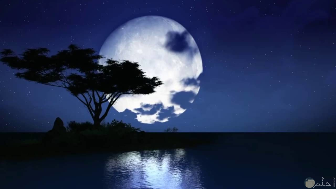 القمر مع الشجر والماء