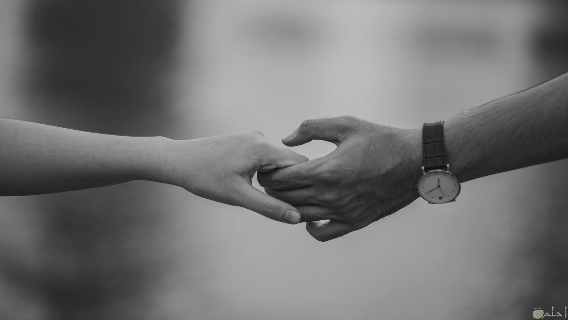المحب الحقيقي هو دائما المتمسك بك مهما حصل لا يتركك ابدا