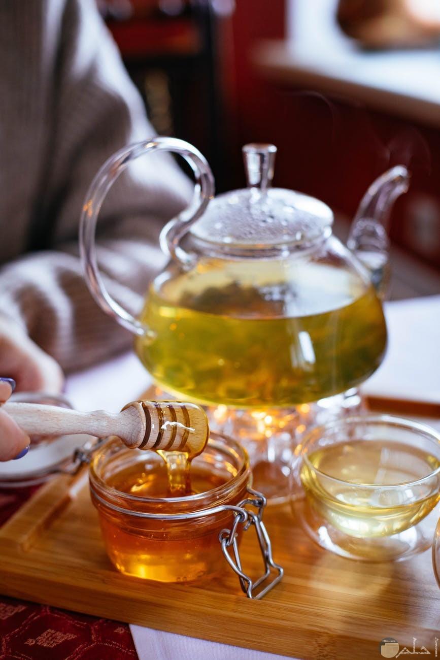 انواع العسل الغامق والفاتح والوسط وفوائده المتعدده