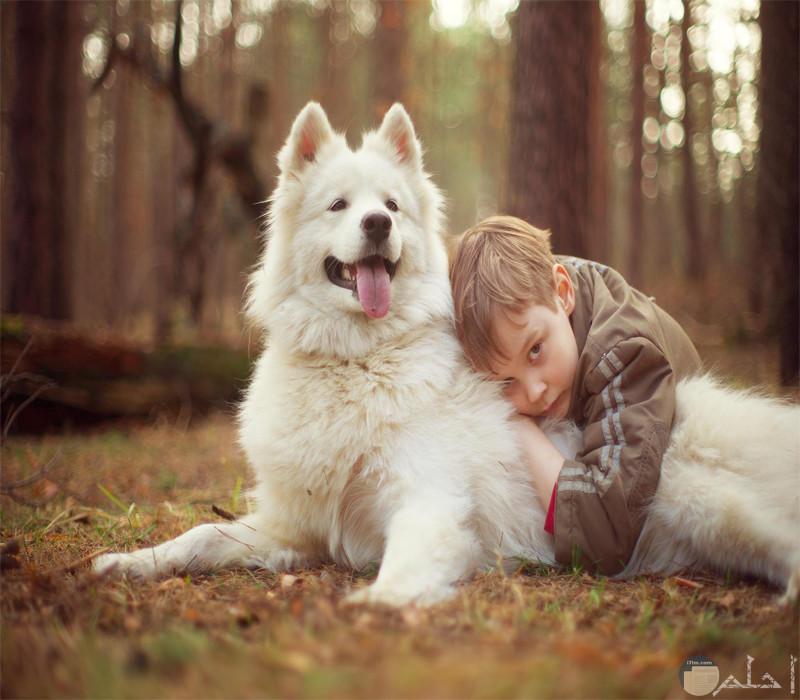 ولد مع كلب أبيض جميل