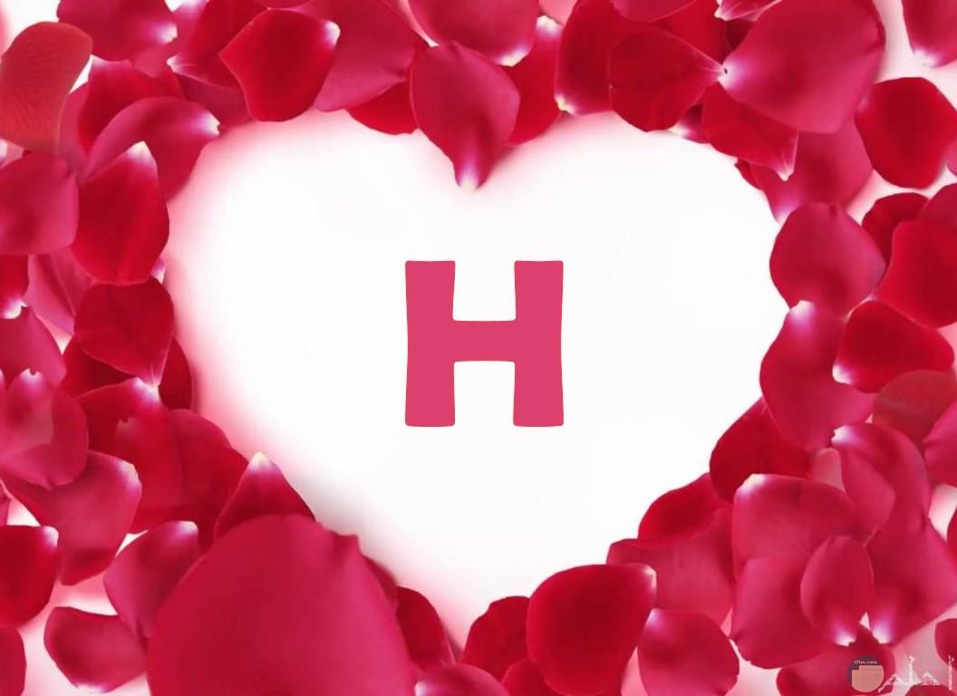 حرف H مع القلوب الحمراء