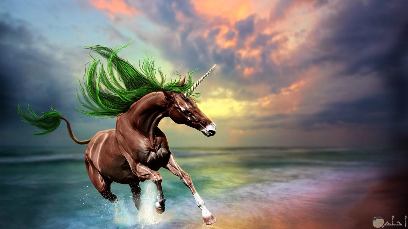 خلفية ثلاثية الأبعاد لحصان مع البحر
