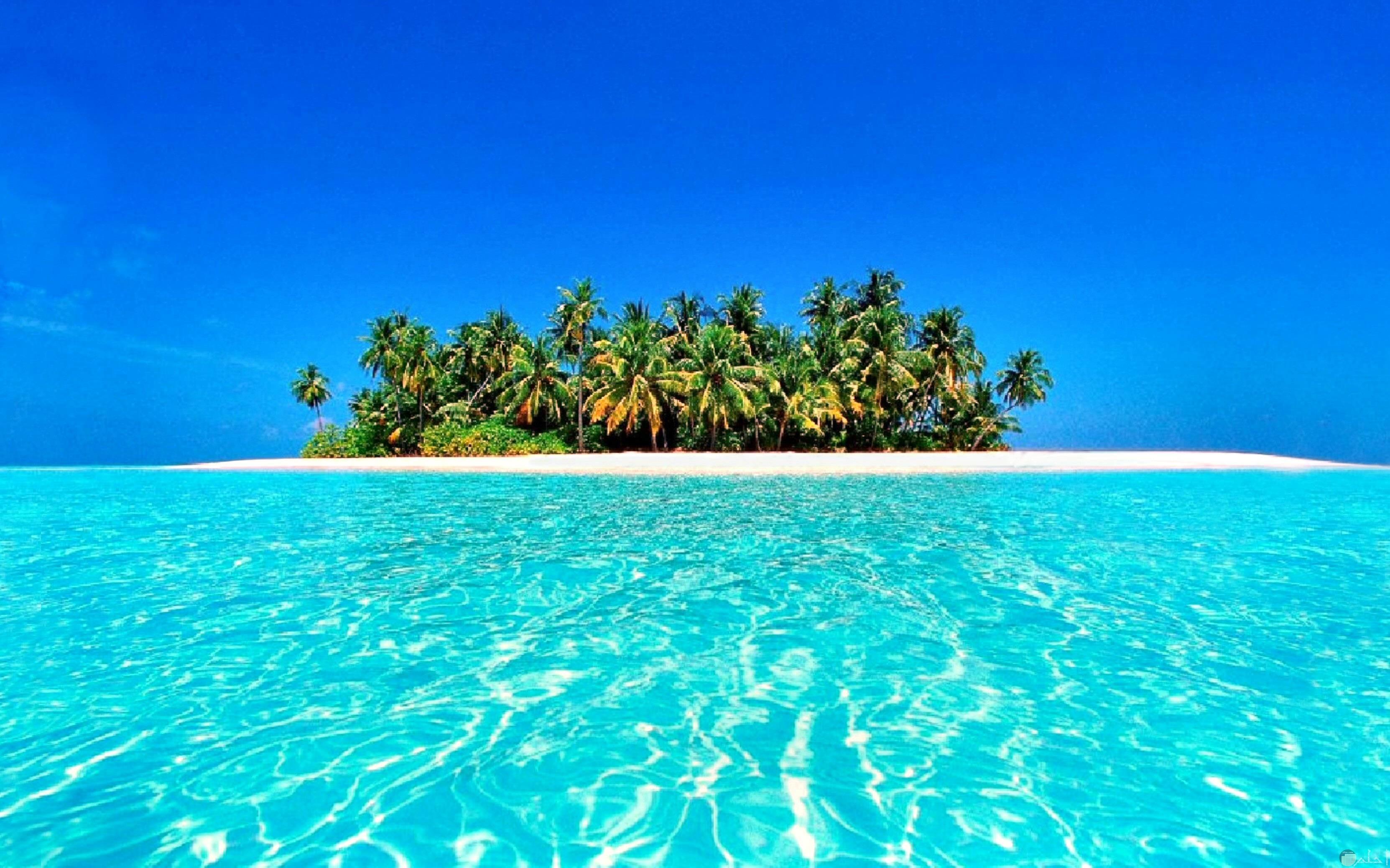 خلفية جميل لجزيرة في البحر مميزة كخلفية للكمبيوتر