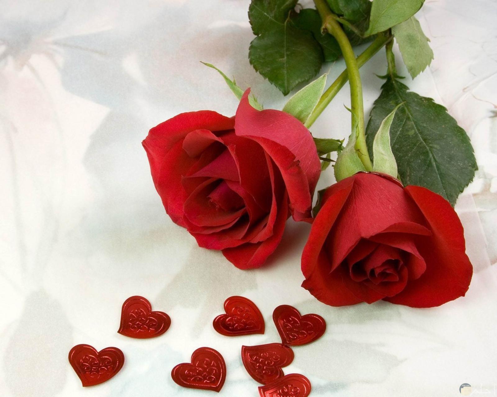 زهور مع قلوب حمرا