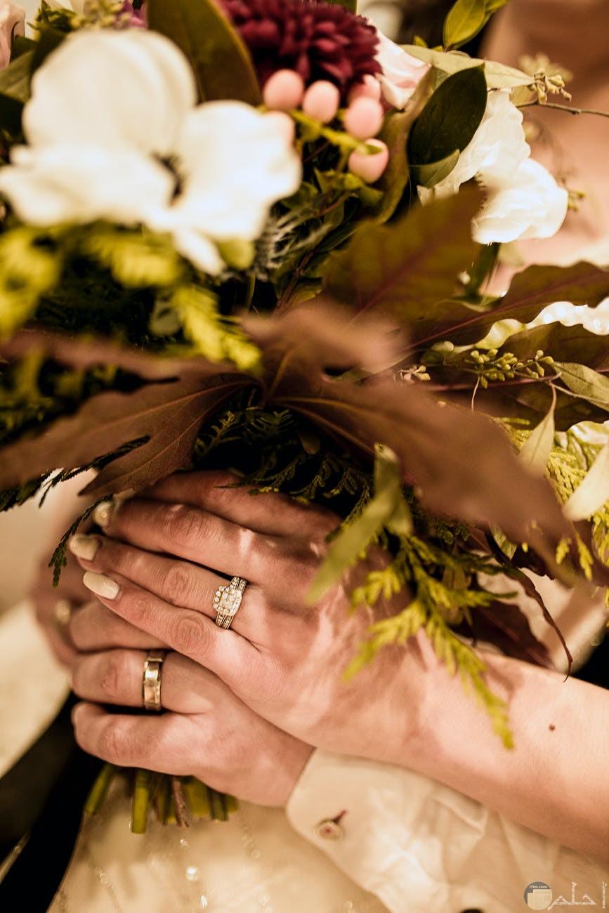 سعادة الازواج مع بعضهم يضفي الحياة بلون البهجة