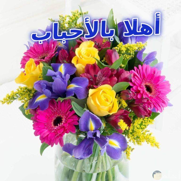 صورة بها باقة جميلة من الورود المختلفة ومدونه بتحية اهلا بالاحباب