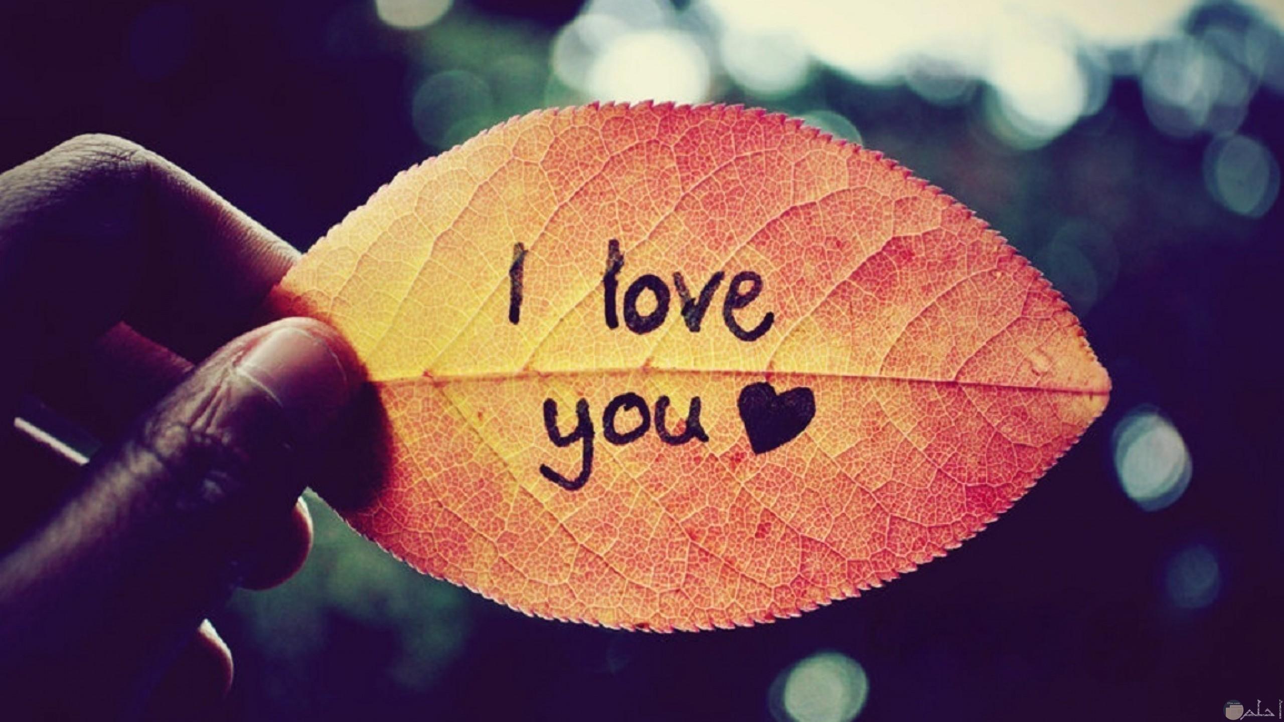 صورة حب رومانسية