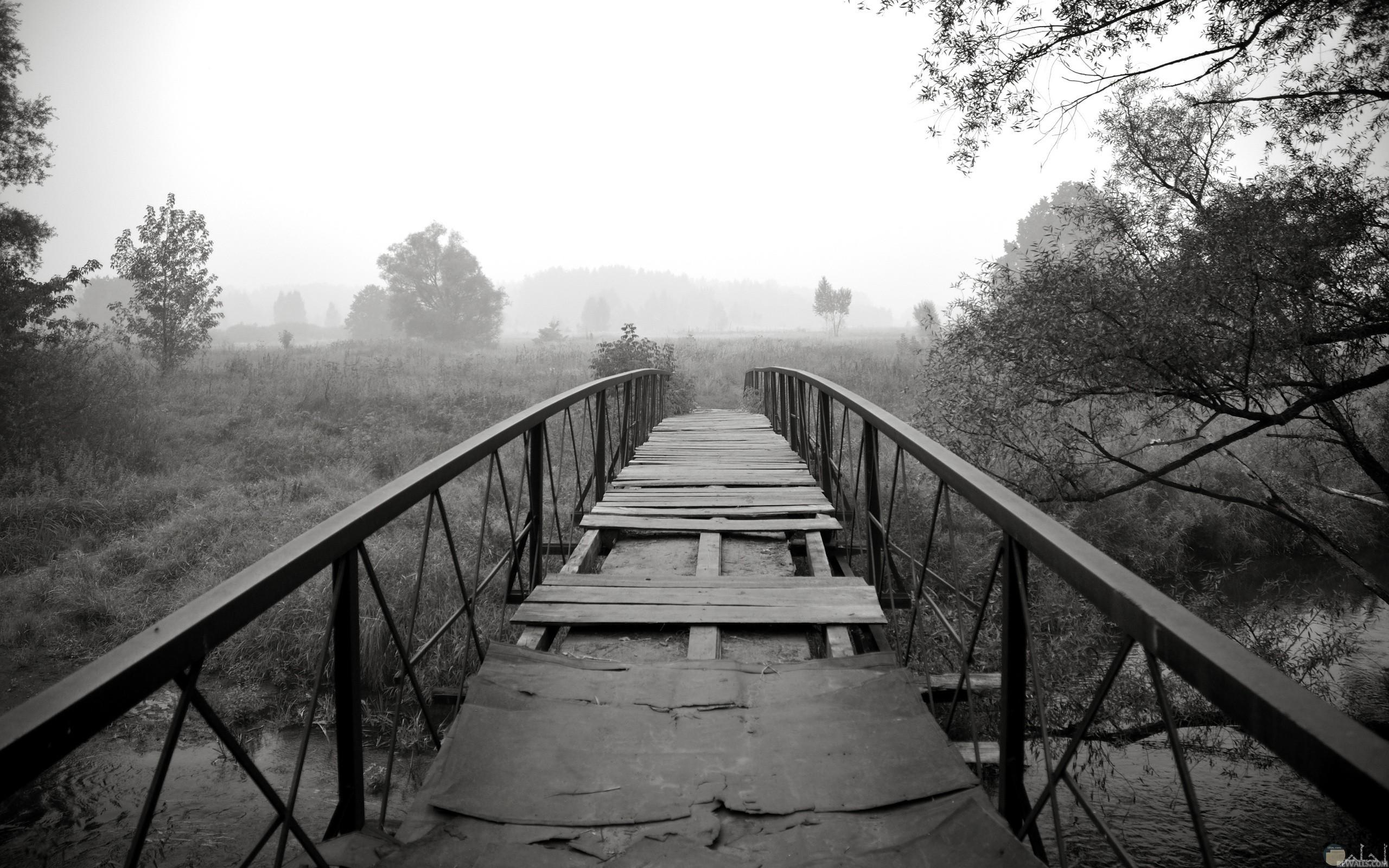 صورة حزينة لمنظر جسر متهالك وقديم