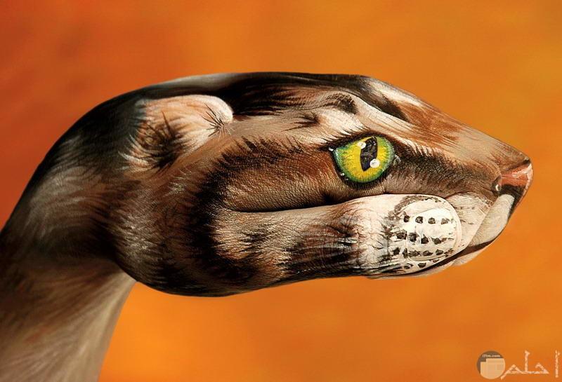 صورة غريبة لثعبان مرسوم على اليدين