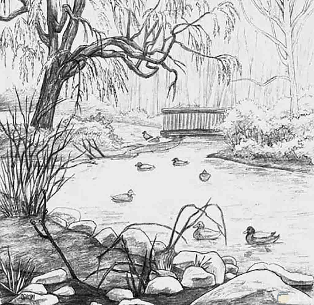 صورة جميلة مرسومة بالرصاص لنهر واشجار