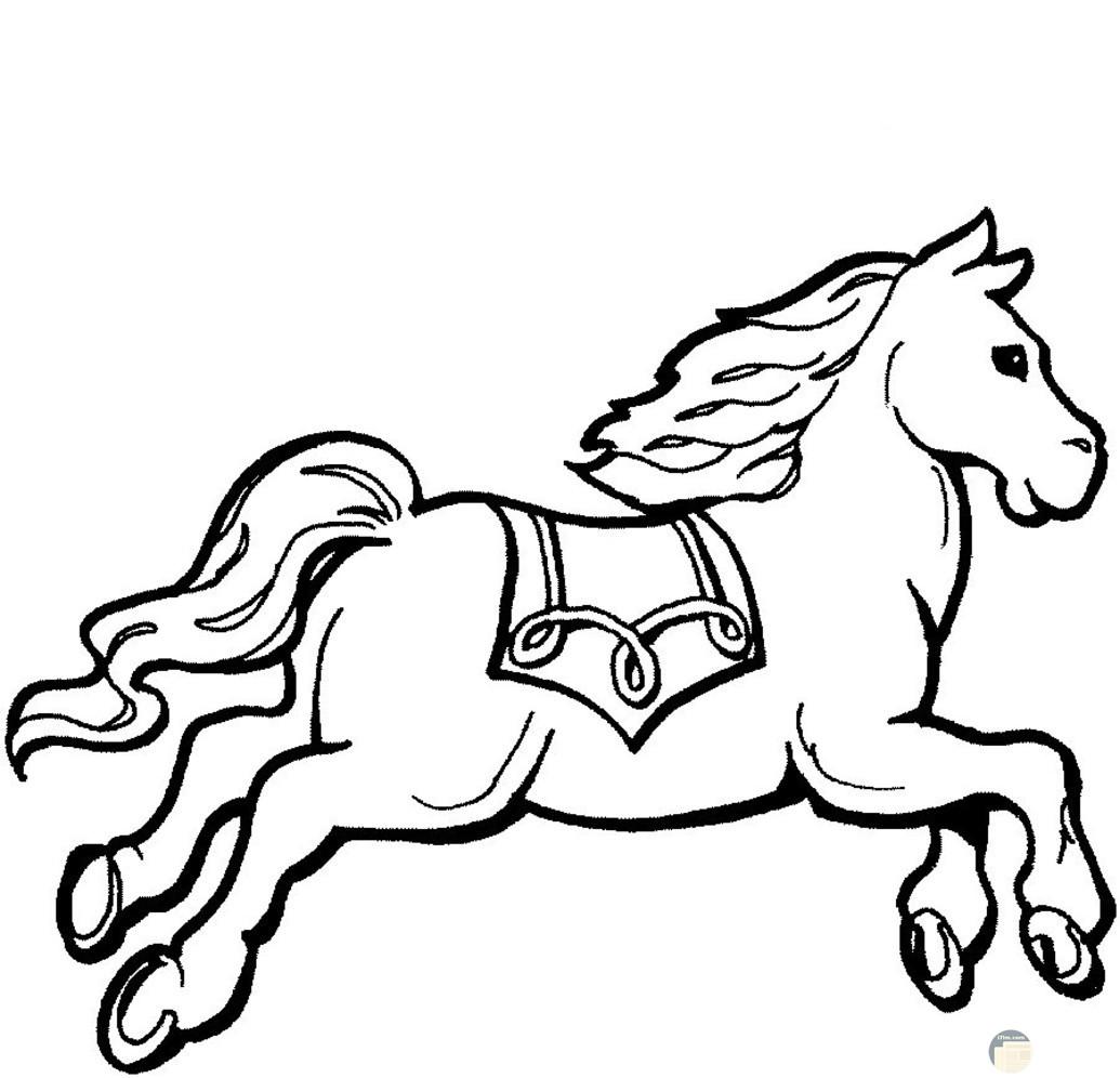 صورة للحصان للتلوين