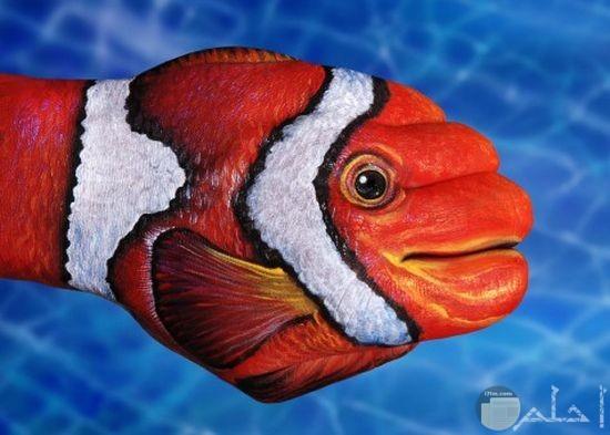 صورة للسمكة نيمو مرسومة بدقة على اليدين