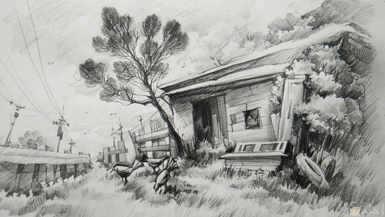صورة رسمة بالرصاص لبيت قديم حوله اشجار