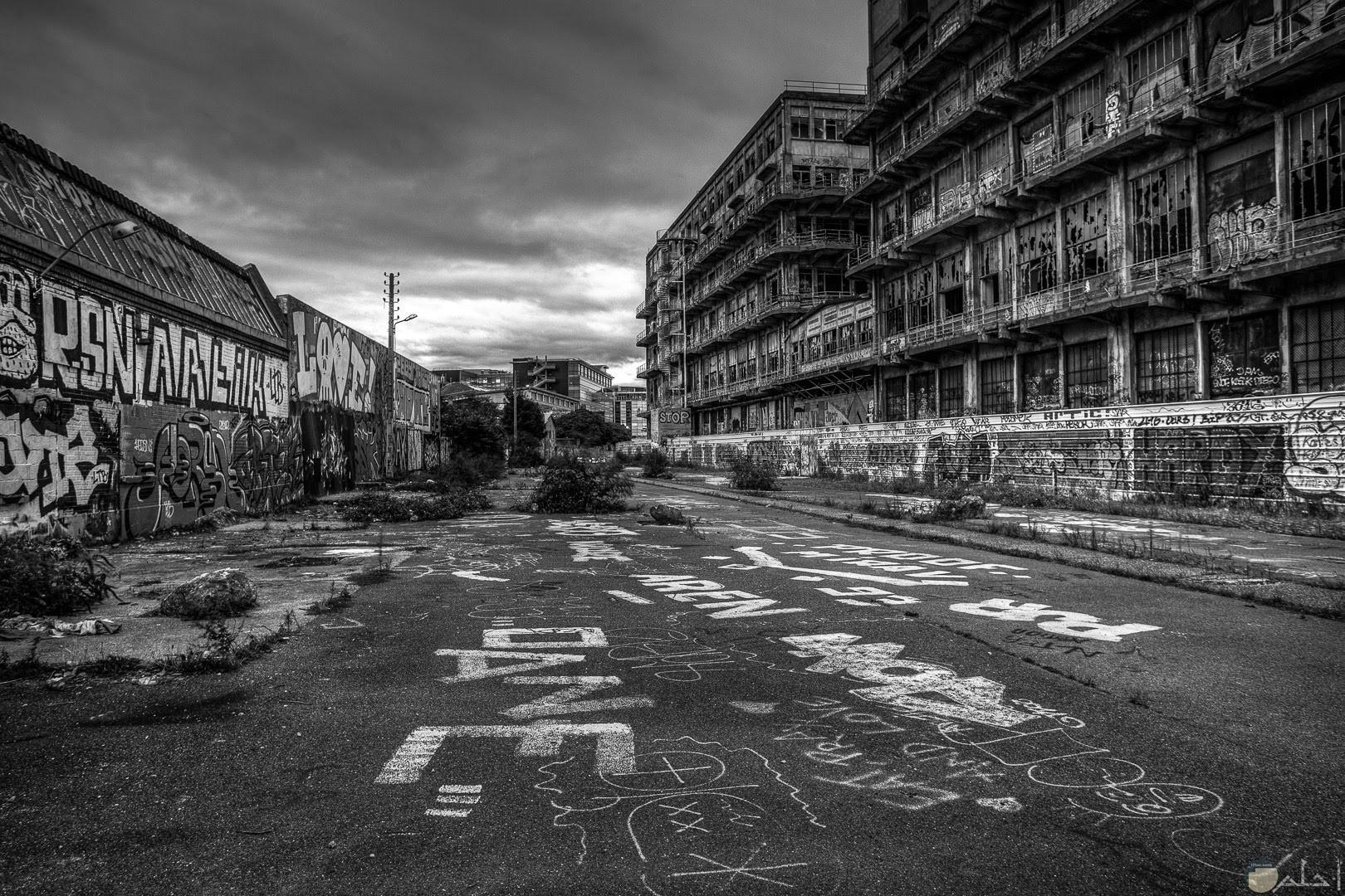 صورة حزينة لشارع مهجور بالأبيض والأسود