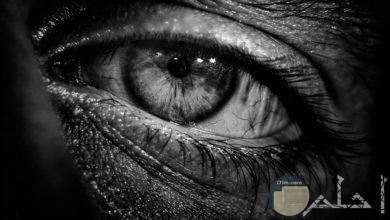 صورة ابيض واسود مؤثرة وحزينة لشكل عين