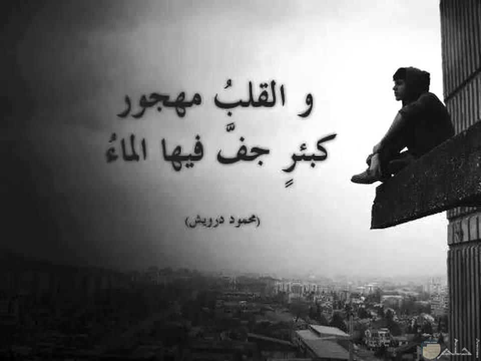 صورة حزينة بالأبيض والأسود عن حزن القلب