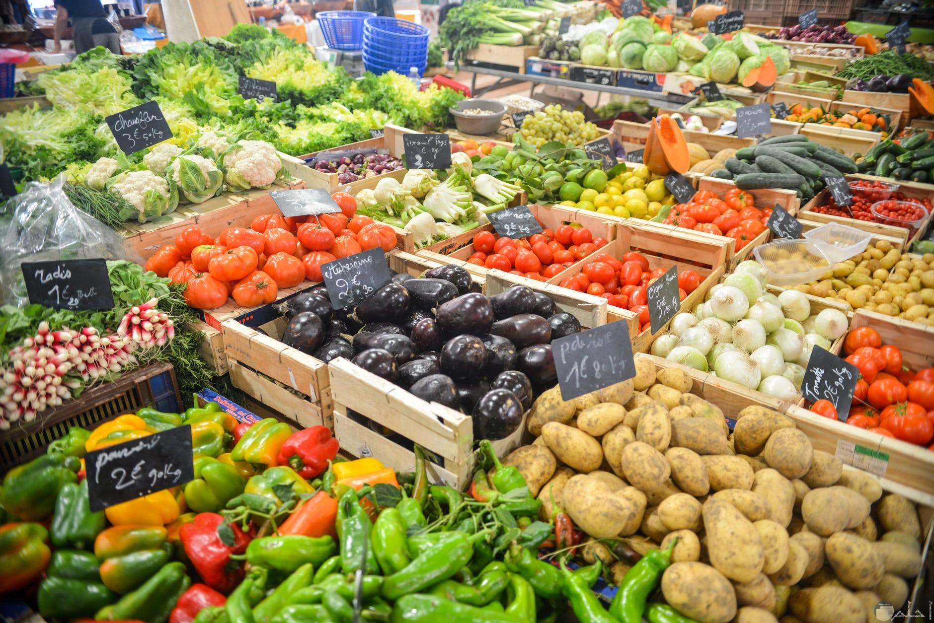 صور خضار 10 صور خضروات طازجة ولذيذة