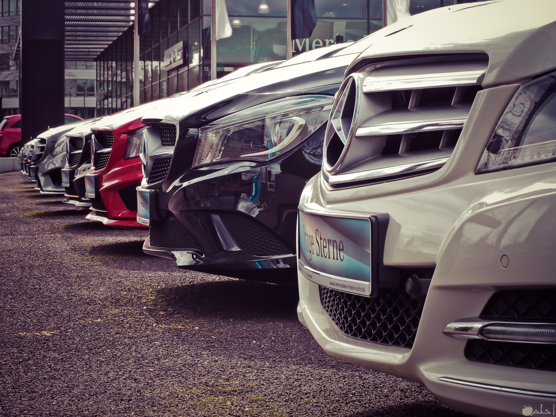 صورة مميزة لسيارات مرسيدس بنز متراصة بجانب بعضها