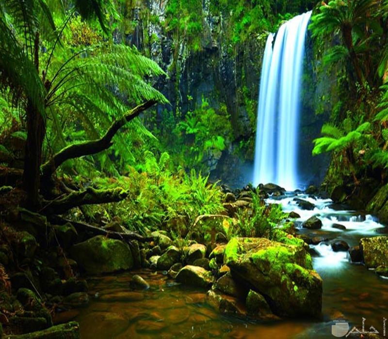 صور صور طبيعة خلابة للشلالات4
