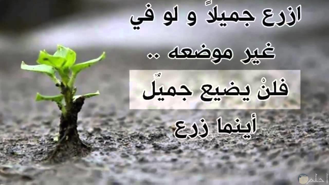 صورة عن جمال عمل الخير كخلفية جميلة لحسابك علي سناب شات